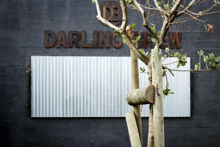Darling Brew - West Coast Way 064