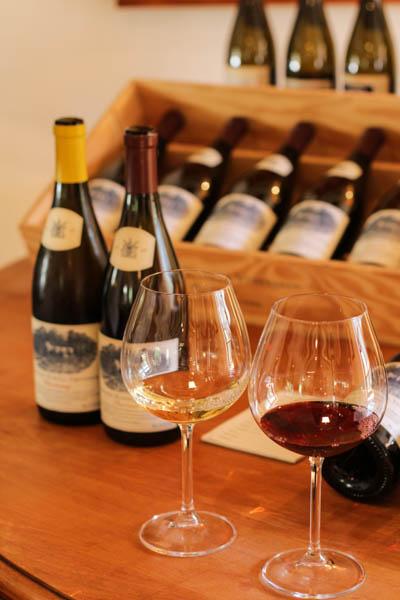 Wine Region Trip 250