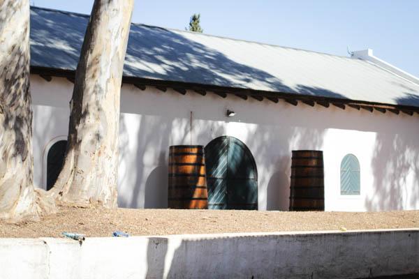 Wine Region Trip 260