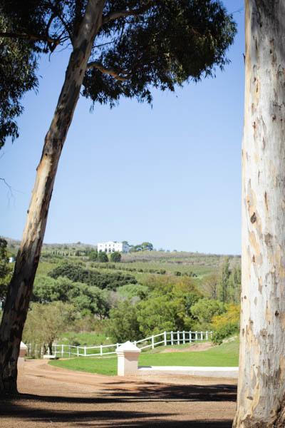 Wine Region Trip 262