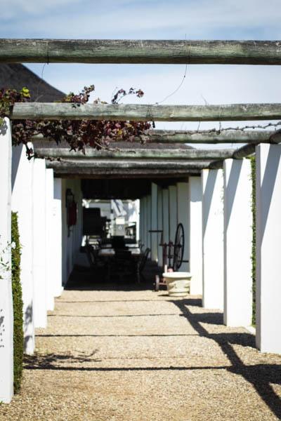 Wine Region Trip 324