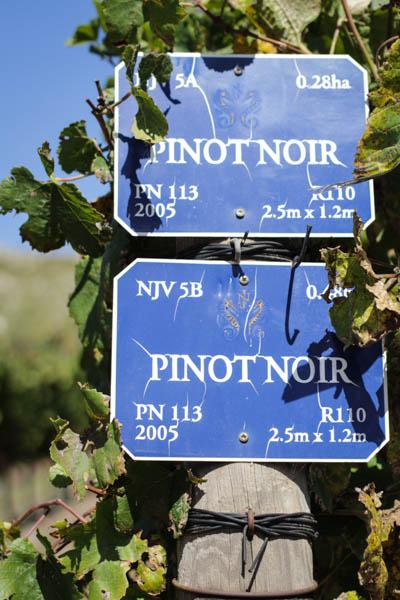 Wine Region Trip 385