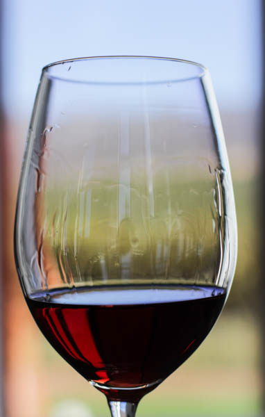 Wine Region Trip 446