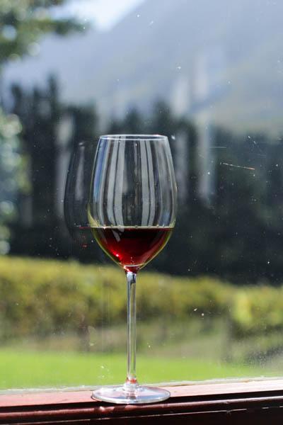 Wine Region Trip 461
